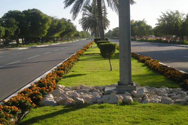 Decorative Garden Bridges