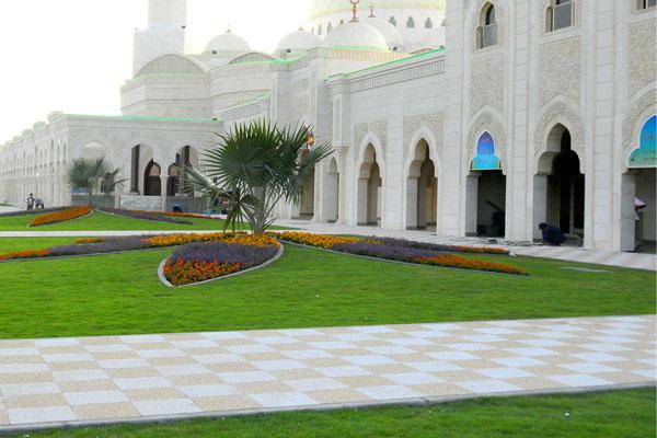 Akar Landscaping | Dubai Miracle Garden » Sohail Al Khaili ...